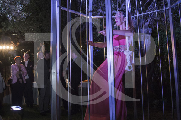 cannes aerial cage, cannes cage, cannes entertainment, cannes, giant cage